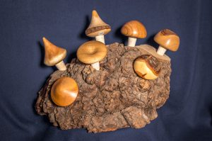 Bouchons champignons
